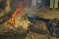 Balástyai böllérnapok 2006