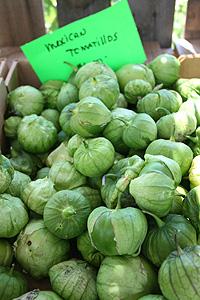 Mexican tomatillos - Mexikói zöld paradicsom