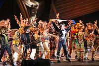Szegedi Szabadtéri Játékok 2007 . A. L. Webber: Macskák (musical)