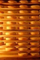 Olasz sajt